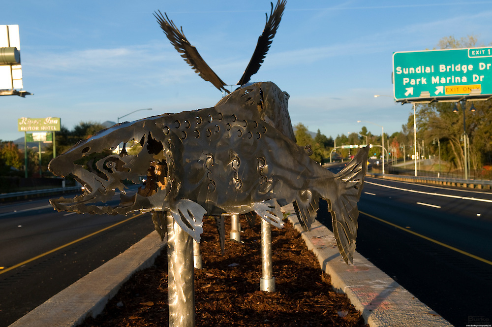 A couple dozen salmon, a trio of turtles and a pair of eagles (all gleaming sculpted stainless steel) adorn the new Highway 44 median between the Sacramento River and downtown Redding.<br />     The California Department of Transportation commissioned Redding sculptor John Martin Streeby to produce the 55 art pieces for the planters inside the raised median. (Photo by Michael Burke @ 530.524.9014 - Copyright Michael Burke)
