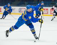 SPISSKA NOVA VES, SLOVAKIA - APRIL 18: Sweden vs USA preliminary round 2017 IIHF Ice Hockey U18 World Championship. (Photo by Steve Kingsman/HHOF-IIHF Images)