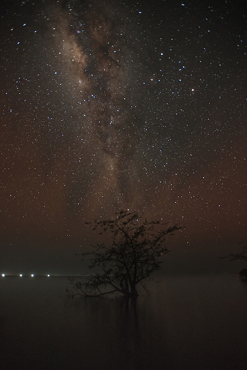 A lone tree grows in the waters of Lake Victoria, off Mfangano Island in Kenya under the Milky Way galaxy.