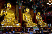 Buddhas in the Hall of the Great Hero or Daeung-jeon at Jogye-sa Buddhist Temple, Seoul, South Korea. ..Sakyamuni Buddha in the center, Amitabha Buddha to the right and Bhaisaiya Buddha(Medicine Buddha) on the left..Jogyesa is the main temple of the Jogye Order of Korean Buddhism, and has a important part in Seon Buddhism. Located in Gyeonji-dong, Jongno-gu within in the old city of Seoul.