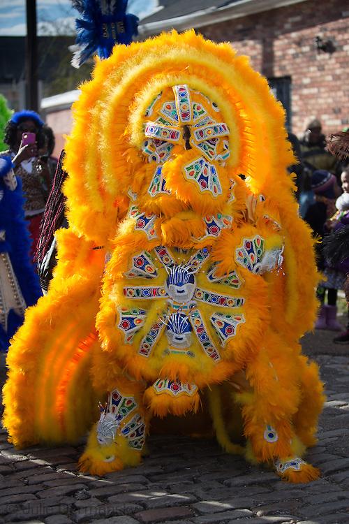 2/17/15, New Orleans, LA, Mardi Gras Day,  Mardi Gras Indians lead a Mardi Gras Parade.