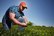 Pasture grass manager