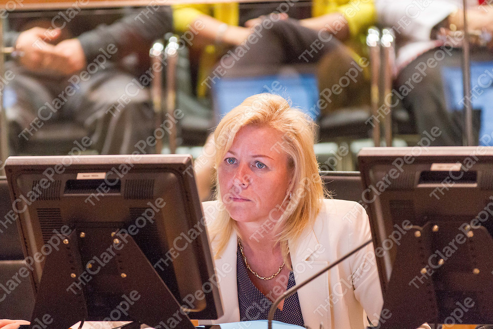 Cllr. Ann Norton at the 1st Meeting of the Clare Co Council