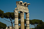 Ruins ancient columns of the Temple of Castor and Pollux in the Roman Forum, Rome, Italy