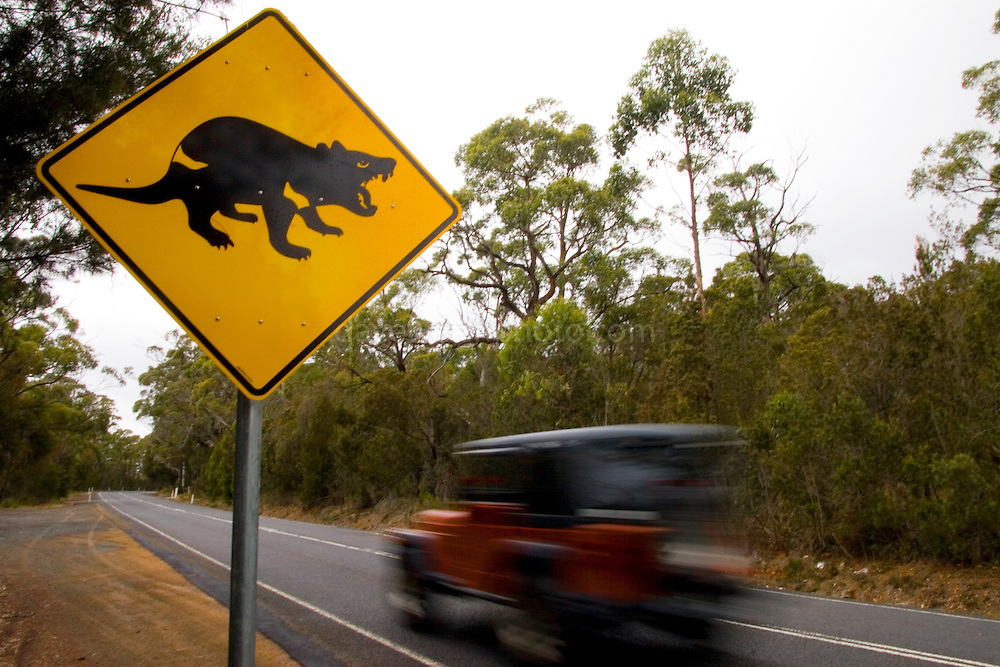 After strong campaigning from scientist Christine Pukk, these official roadsigns were erected on the Tasman Peninsula to cut deaths by roadkill. Pukk is working on the Tasmanian Devil Facial Tumor Disease issue, which is a contagious cancer. ..