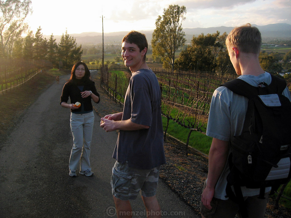 Kei, Josh, and Adam on a hike through the vineyards of Napa Valley, CA.