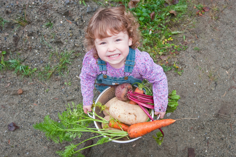 A cute little girl smiles holding veggies freshly harvested from her garden. MR MRA