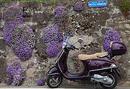 A Vespa is parked alongside a rock wall with spring flowers in the Lavaux wine region in Switzerland.