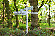 Traditional directional signpost to Bradworthy, Holsworthy, East Youlstone, Kilkhampton, Blatchborough in North Devon, UK