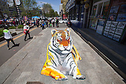 JILIN, CHINA - MAY 27: (CHINA OUT) <br /> <br /> An old man paints a 3D tiger on ground on May 27, 2016 in Jilin, Jilin Province of China. It\'s interesting that the aged man describes himself as a 70-year-old people in appearance and a 40-year-old guy in mental state but actually at 53 years old.<br /> ©Exclusivepix Media