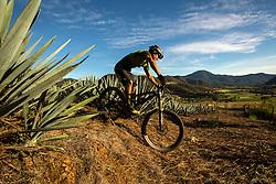 Alvaro Gutierrez - Raicilla Plantation<br /> Mascota, Mexico