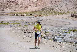 © Licensed to London News Pictures. 14/11/2013.<br /> <br /> Competitors during the race<br /> <br /> Inaugural Volcano Marathon, Atacama Desert, Chile. The race took place in the Atacama Desert in Chile, beginning at an altitude of 4,400 metres (14,500 feet) in the vicinity of Lascar Volcano. It was a gruelling affair for many of the competitors who had to encounter some challenging hills and manage the impact of the heat and oxygen deprivation. The average altitude of the entire race was close to 4,000 metres and temperatures reached the mid 20s Celsius, or almost 80 Degrees Farenheit.<br /> <br /> Photo credit : Mike King/LNP<br /> <br /> Further information and link to video here: https://www.dropbox.com/s/0277bepxvo0t8il/Marathon%20copy.txt