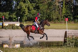 De Cleene Wouter, BEL, Quintera<br /> Chateau d'Arville<br /> CCI3*-S Sart Bernard 2019<br /> © Hippo Foto - Dirk Caremans