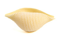 Conchiglie pastaon white background