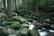 Deutschland, Germany,Baden-Wuerttemberg.Schwarzwald.Triberg, Triberger Wasserfälle, Felsen, Bach im Wald, flieflendes Wasser.Triberg, Triberg waterfall, river with rocks in forest...