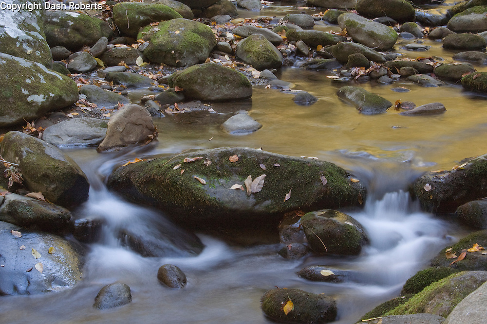 Stream in the Roaring Fork area of the Smoky Mountains.