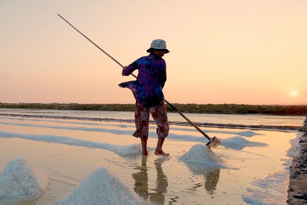 Workers moving salt in Kampot salt fields, Cambodia