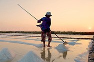 Workers moving salt in Kampot salt fields, Cambodia