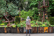 Walkers Forgotten Quarry Garden by Graham Boodle - Press preview day at The RHS Chelsea Flower Show.