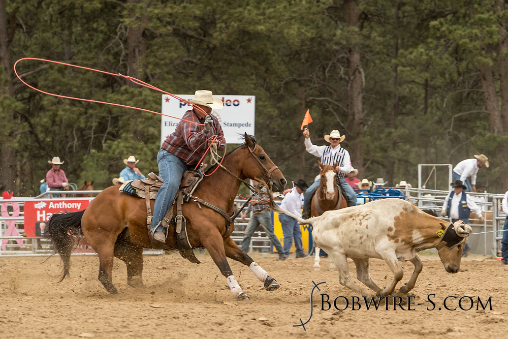 Heeler Hank Bounds makes his team roping run during the third performance of the Elizabeth Stampede on Sunday, June 3, 2018.