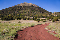 The north side of 1,182 ft. Capulin Volcano.  Capulin Volcano National Monument, New Mexico.  USA