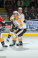 KELOWNA, CANADA - OCTOBER 25: Jayce Hawryluk #8 of Brandon Wheat Kings skates against the Kelowna Rockets on October 25, 2014 at Prospera Place in Kelowna, British Columbia, Canada.  (Photo by Marissa Baecker/Shoot the Breeze)  *** Local Caption *** Jayce Hawryluk;