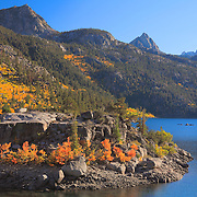 Lake Sabrina Island Late Afternoon - Fall Color