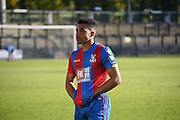 Ben Wynter looks dejected after drawing the Final Third Development League match between U21 Crystal Palace and U21 Coventry City at Selhurst Park, London, England on 12 October 2015. Photo by Michael Hulf.