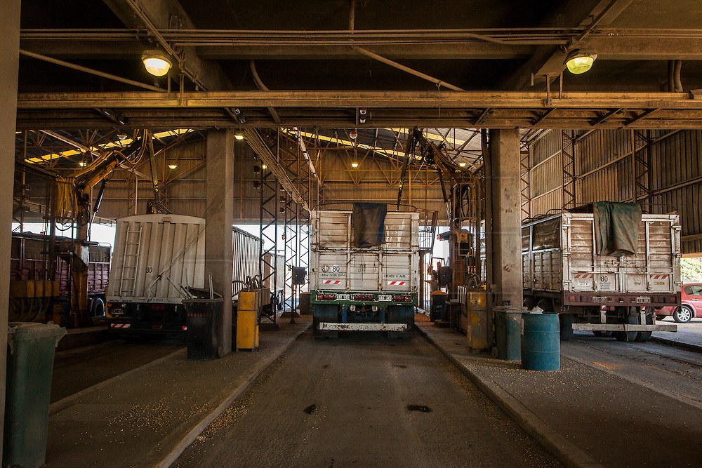 2015/03/06 – San Lorenzo, Argentina: Trucks filled with soybeans await for the quality of their cargo to be inspected and their weighted, on Terminal 6 of the General San Martín Port. This is done to understand the quality of the grains delivered and the value of the cargo. Around 1,300 trucks deliver grains at Terminal 6, representing 40,000 tons a day, which is half of the capacity that the port can recive in one single day. Terminal 6 is the largest of its kind in South America where 80,000 tons per day are received by trucks, trains and boats. The grains are then process at the plant located at the port and then shipped worldwide. (Eduardo Leal)