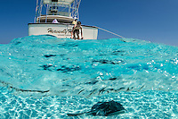 "Tourists interact with Southern Stingrays at World Famous site, ""Stingray City Sandbar""<br /> <br /> <br /> Shot in Cayman Islands"