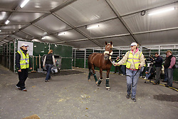 Exquis Nadine lead to the transport container by groom Vanesa Ruiter<br /> Alltech FEI World Equestrian Games - © Dirk Caremans