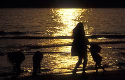 Trindade, RJ, Brasil.  Dezembro/2004.Praia do Sono./ Sono beach (Sleepy Beach).Foto © Gilberto Marques/Argosfoto