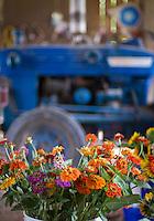 Turnbull Creek Farm grows organic produce and flowers.