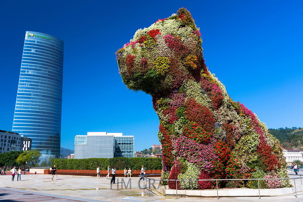 Puppy flower feature floral art in dog form by Jeff Koons at Guggenheim Museum, Iberdrola Tower, Bilbao, Spain