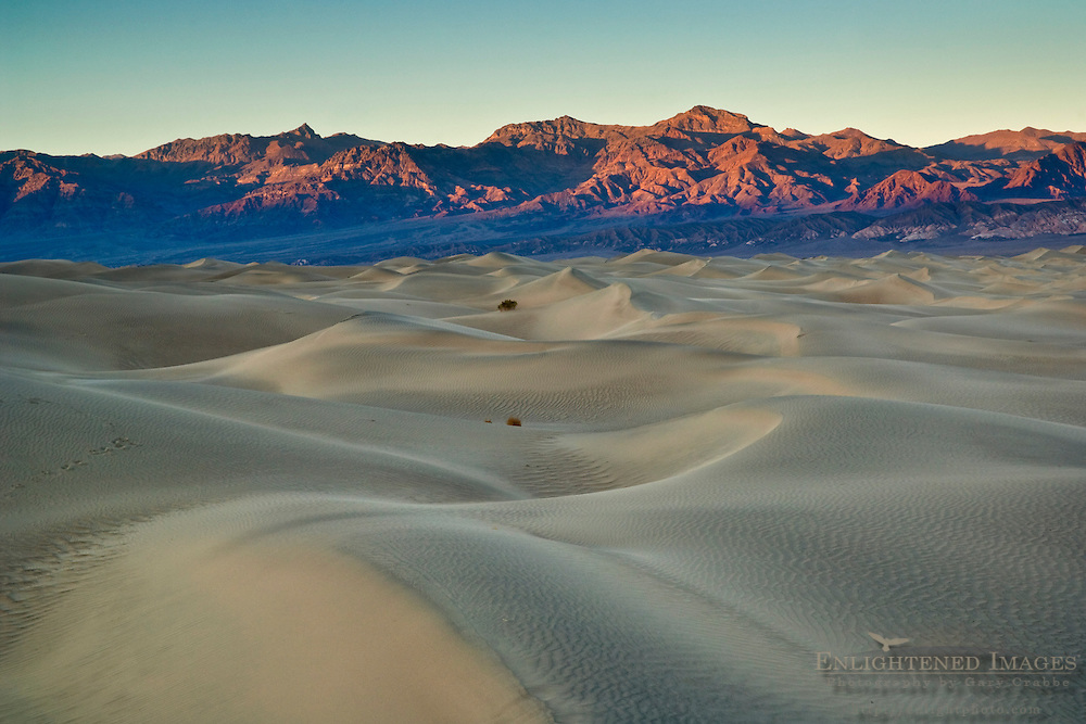 Mesquite Sand Dunes, near Stovepipe Wells, Death Valley National Park, California