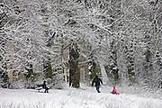Man pulls child on a  toboggan on winter's day on snow-covered Hampstead Heath, London, United Kingdom