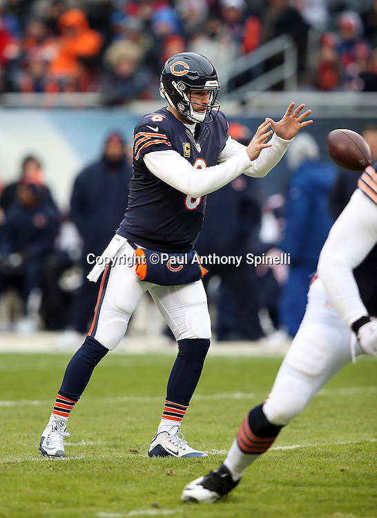 Chicago Bears quarterback Jay Cutler (6) catches a shotgun snap during the NFL week 17 regular season football game against the Detroit Lions on Sunday, Jan. 3, 2016 in Chicago. The Lions won the game 24-20. (©Paul Anthony Spinelli)