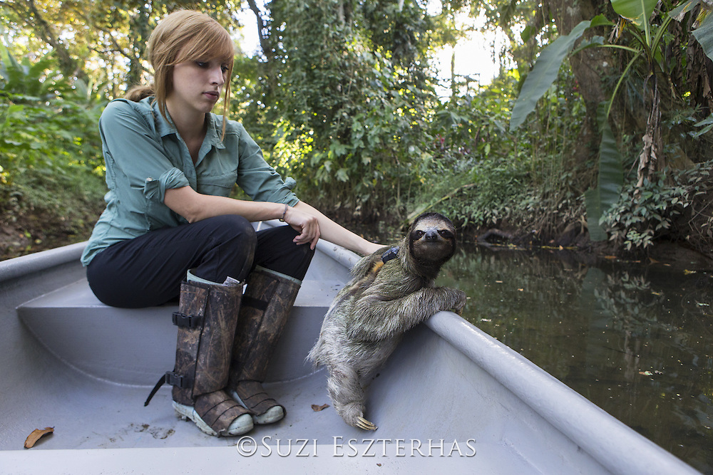 Brown-throated Three-toed Sloth <br /> Bradypus variegatus<br /> Rebecca Cliff, sloth biologist, with sloth wearing &quot;sloth backpack&quot; riding in boat to release site<br /> Aviarios Sloth Sanctuary, Costa Rica<br /> *Model release available