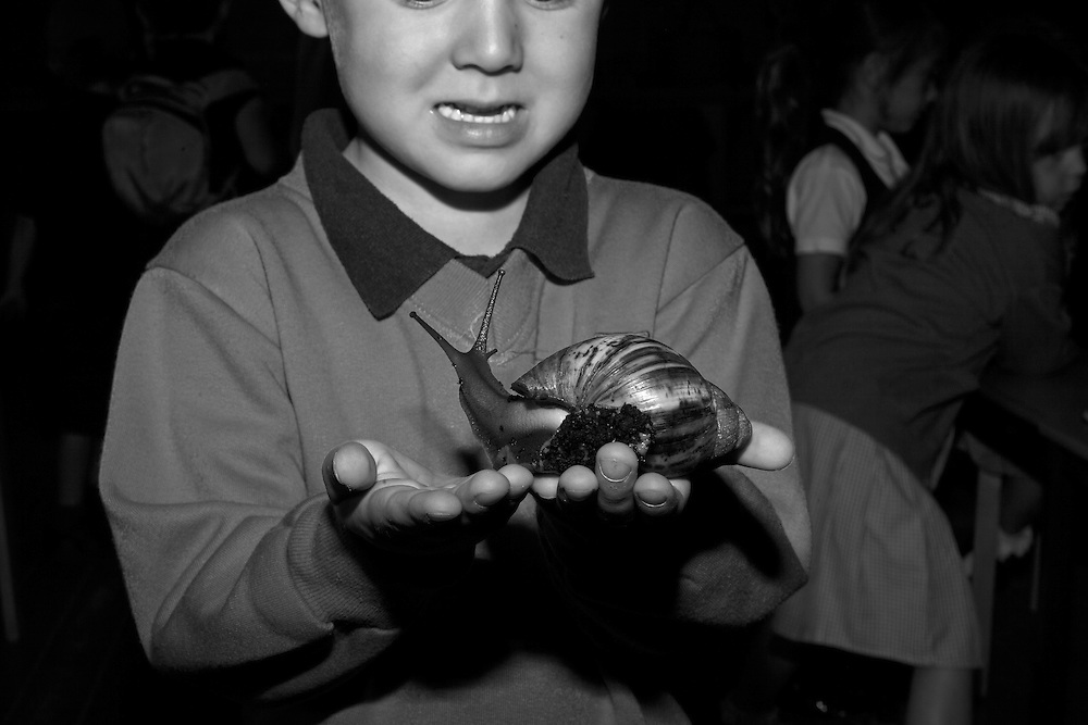 Ben reluctantly engages with an African slug during a school field trip to Buttefly world in Watford, England Friday, July 17, 2015 (Elizabeth Dalziel) #thesecretlifeofmothers #bringinguptheboys #dailylife