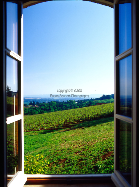 The view of Domain Drouhin's winery from the tasting room in Dundee, Oregon