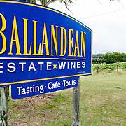 Sign and vines at Ballandean Estate winery, one of the oldest and most established vineyards near Stanthorpe, Queensland