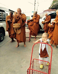 This Two And Half Years Old Monk From Thailand Has Been A Storm On Internet For His Cuteness.<br /> Nongkorn was sent to a Thailand temple Wat Pa Maneekan when he was only three months old.<br /> Now Nongkornís parents send him to temple in the morning and get him back at night. As Nongkorn is too young and has to get up early, he is always sleepy. Sometimes, Nongkorn will just sleep at his master.<br /> Nongkorn is diligent when he is awake. He would go out with masters to beg for alms.