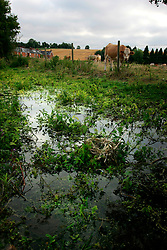 UK ENGLAND HAMPSHIRE ST MARY BOURNE 12AUG06 - Dried-up river bed of the Bourne river in the St Mary Bourne valley in Hampshire...jre/Photo by Jiri Rezac..© Jiri Rezac 2006..Contact: +44 (0) 7050 110 417.Mobile:  +44 (0) 7801 337 683.Office:  +44 (0) 20 8968 9635..Email:   jiri@jirirezac.com.Web:    www.jirirezac.com..© All images Jiri Rezac 2006 - All rights reserved.