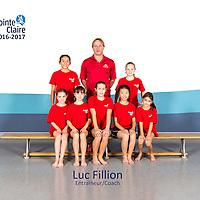 Luc Fillion -  Group 2