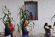 Dance of the milpa