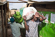 Workers move goods around in the Makongeni market, Thika, Kenya. The market work closely with Afcic, Action for children in conflict, and are trying to encourage the kids to go to school. The manager has banned children from working in the market during school hours.