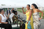 Water Mill, New York: (L-R) Poet Elizabeth Alexander, Thelma Golden, Chief Curator, The Studio Museum in Harlem, Photographic Artist Carrie Mae Weems and Television Producer Crystal McCrary Anthony attend the RUSH Philanthropic Arts Foundation 15th Annual Art For Life Benefit Gala held in the Hamptons at the Farmview Farms on July 26, 2014  in Water Mill, New York. (Terrence Jennings)