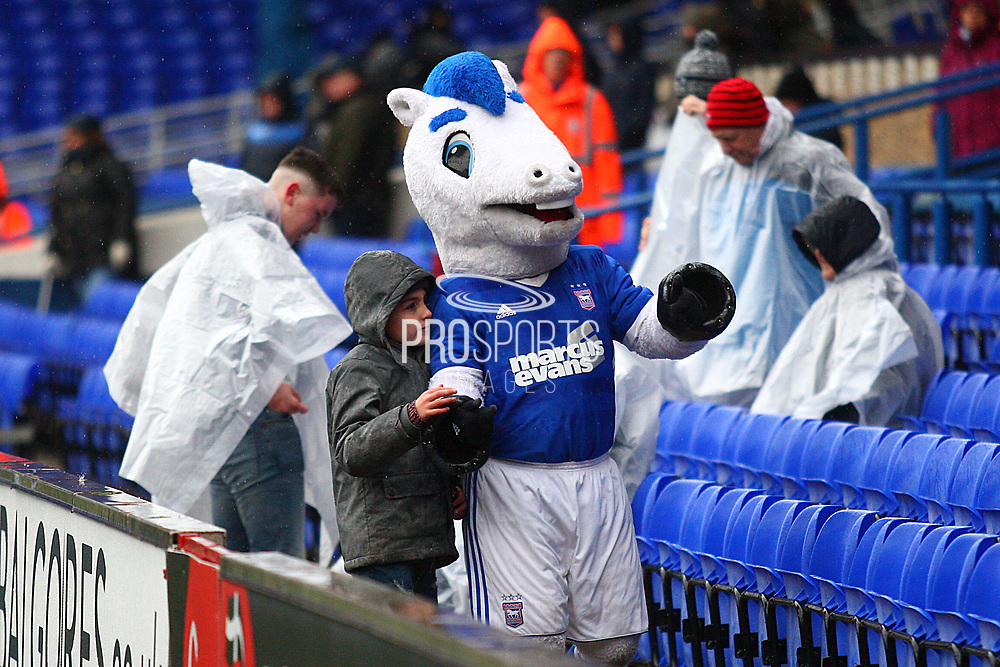 The Ipswich mascot keeps fans entertained at a wet stadium during the EFL Sky Bet Championship match between Ipswich Town and Burton Albion at Portman Road, Ipswich, England on 10 February 2018. Picture by John Potts.