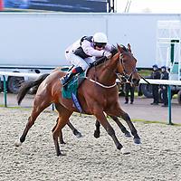 Bert The Alert and Fergus Sweeney winning the 12.00 race