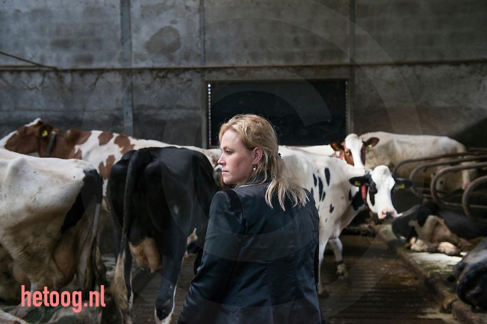 Nederland, Agelo 13mei2014 Kristel Scholten Linde op erve Broam in Agelo (nabij Weerselo) Erve Broam<br /> Familie Scholten Linde<br /> Nijenkampsweg 4<br /> 7636 RG Agelo<br /> <br /> Foto: Cees Elzenga